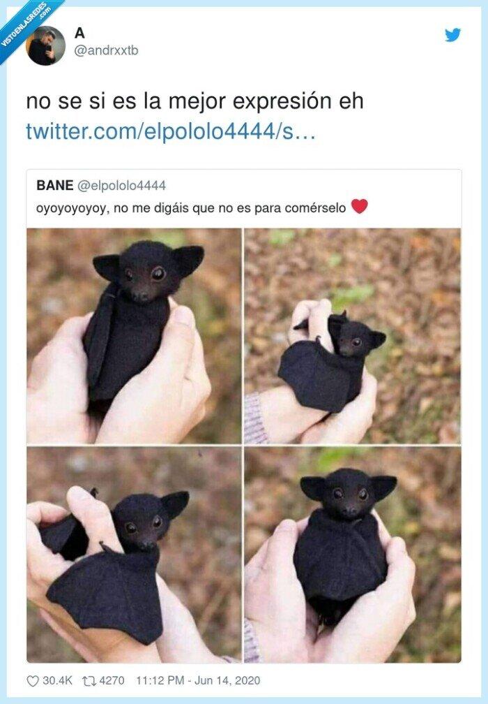 bebé,comerselo,murciélago