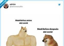 Enlace a Se han ganado el aprecio de toda España, por @adrianestudillo