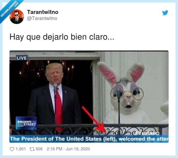 aclaración,conejo,donald trump,left