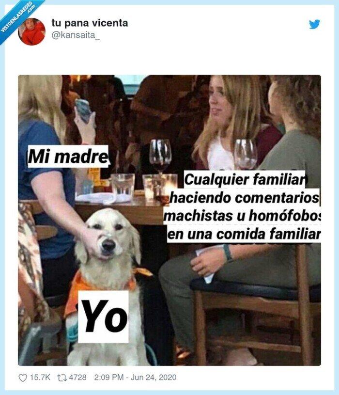 comentarios,familia,familiar,madre,perro