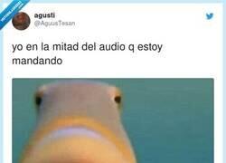 Enlace a Que teibadecí, por @AguusTesan