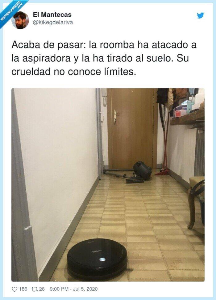 aspiradora,crueldad,límites,roomba
