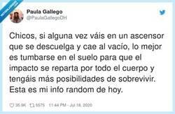 Enlace a Lo más útil y random que vas a leer hoy, por @PaulaGallegoDH