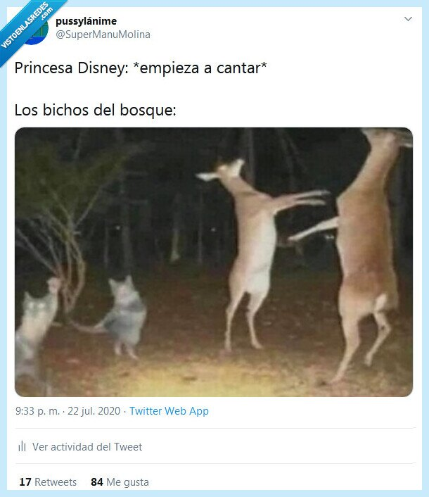 animales,bosque,cantar,disney,princesa