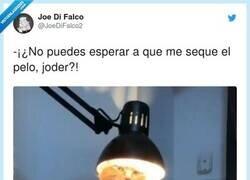 Enlace a Ya no se respeta nada, @JoeDiFalco2