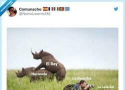 Enlace a Con elefantes ya era el meme perfecto, por @NachoLaserna182