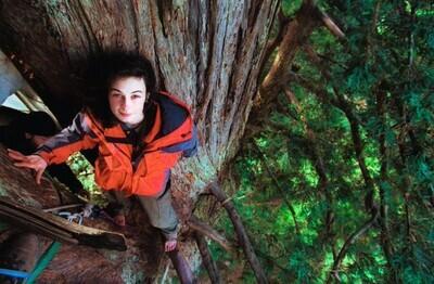 649385 - Este árbol de más de 1000 años representa una de las victorias más grandes de la naturaleza contra la humanidad gracias a una historia alucinante
