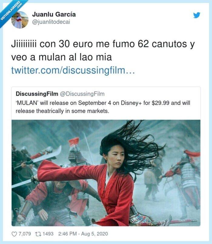 canutos,disney,euros,mulan