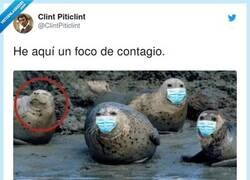 Enlace a Suficiente Internet por hoy, por @ClintPiticlint