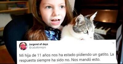 662180 - Esta niña de 11 años quiere un gato como sea y les hace un tremendo chantaje emocional en forma de vídeo a sus padres que se ha hecho muy viral