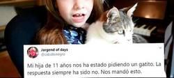Enlace a Esta niña de 11 años quiere un gato como sea y les hace un tremendo chantaje emocional en forma de vídeo a sus padres que se ha hecho muy viral