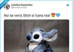 Enlace a ¿Cómo le explico a mis padres que quiero un Stich como mascota?, por @SuavesLomitos