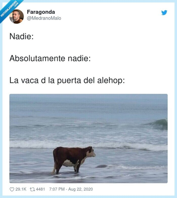 alehop,puerta,vaca