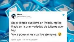 Enlace a Una tuitera hace una descripción perfecta de todos los perfiles de usuarios posibles que nos podemos encontrar en Twitter: lo clava muchísimo, @Maria37Muchos_