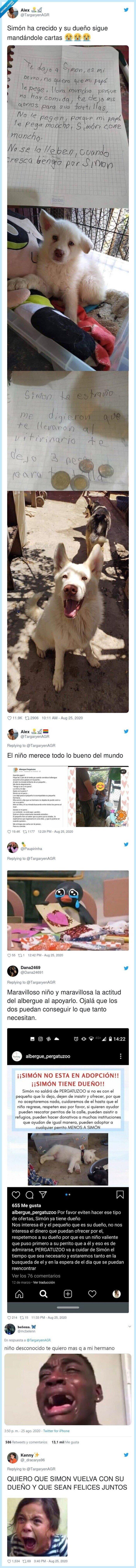 albergue,niño,perro,pesos,simón,twitter