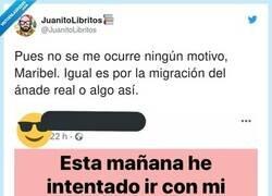 Enlace a NUNCA abandonaré facebook. En mi vida he visto un lugar que me procure tantas risas, por @JuanitoLibritos