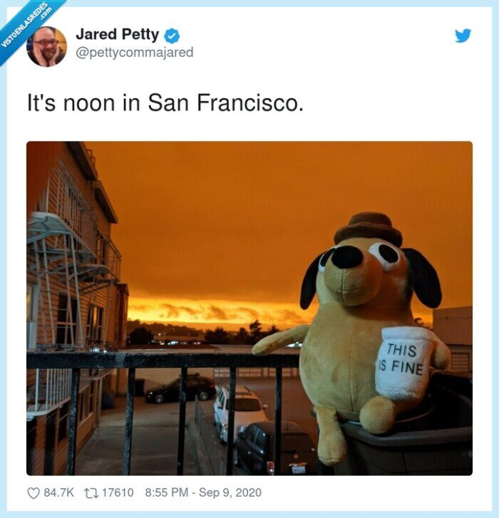 california,incendios,meme,san francisco,this is fine