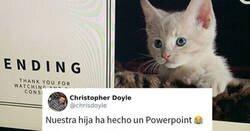 Enlace a Esta chica hizo una presentación de Powerpoint para convencer a sus padres de adoptar un gato, y se volvió viral