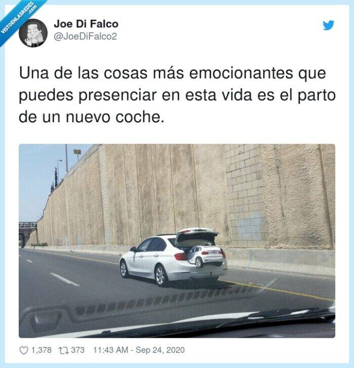 coche,nacimiento,vida