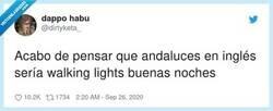 Enlace a The Walking Lights, por @dirtyketa_