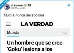Enlace a Murcia, ¡qué hermosa eres!, por @ElMolecula23