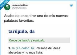 Enlace a Para que luego digáis que aquí no se aprende nada , por @unmundolibre