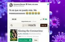 Enlace a Han escrito un libro erótico sobre el coronavirus y las descripción/reseñas son lo mejor que vas a leer hoy, por @CaryannaReuven