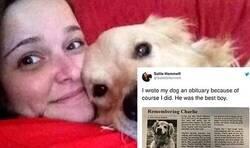 Enlace a El sentido obituario de una mujer a su perro que ha hecho llorar a las redes sociales y se ha convertido en lo más viral de la semana, por @SallieGHammett