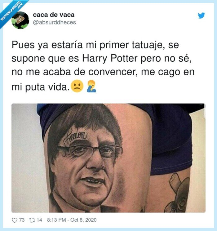 harry,hogwarts,independencia,potter,puigdemont