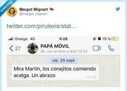 Enlace a Diferentes tipos de mensajes que envían los padres por whatsapp, por @margot_mignart