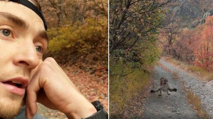 717585 - Un corredor huyendo de un puma que le persigue protagoniza los seis minutos más angustiosos en mucho tiempo