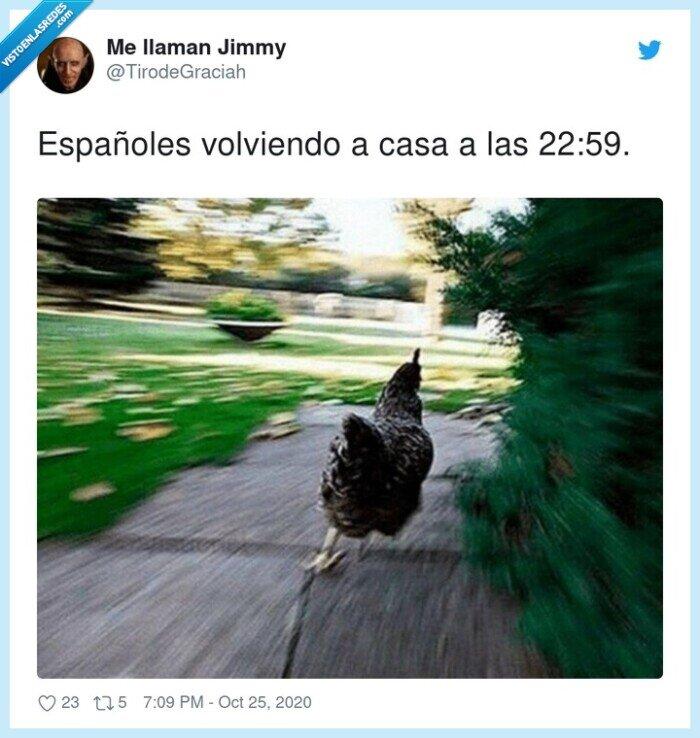 casa,españoles,queda,toque,volviendo