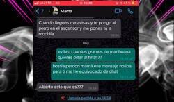 Enlace a Le hace una broma sobre marihuana a su madre y ella le contesta con una bronca por audio que parece que vaya fumadísima  , por @ceciarmy