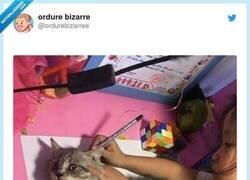 Enlace a Cuando tenías que hacer un dibujo de tu mascota para el cole, por @ordurebizarree