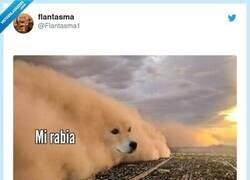 Enlace a Me pasa y lo siento, por @Flantasma1