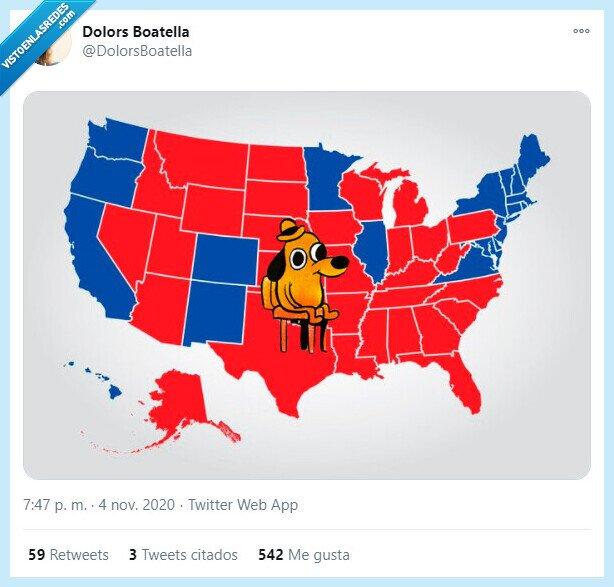 azul,estadosunidos,fuego,llamas,mapa,perro,rojo