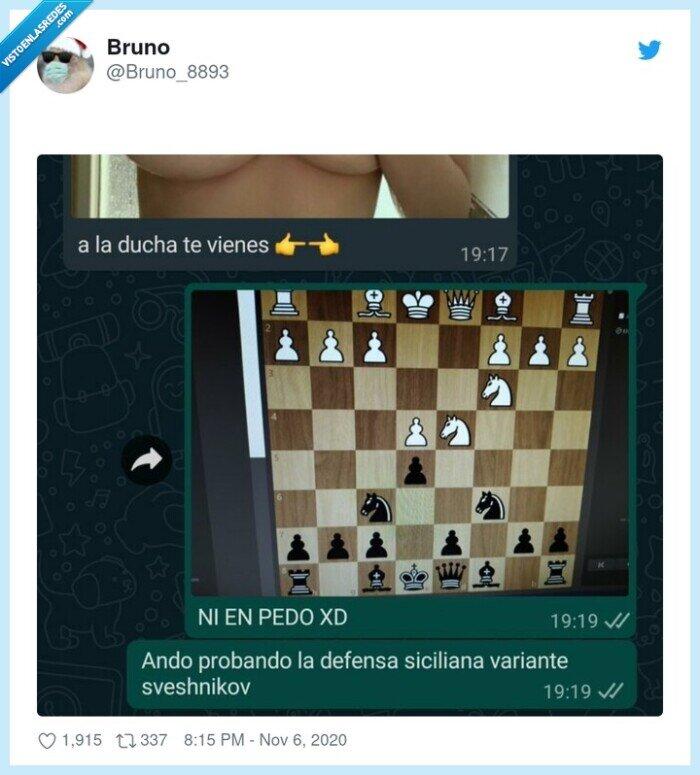 ajedrez,ducha,prioridades,provocación
