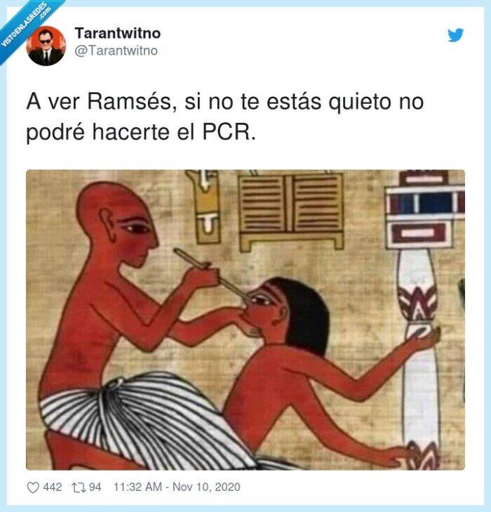 egipcios,pcr,predicción,ramsés