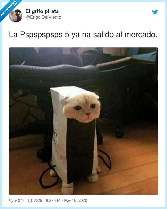 gato,mercado,ps5,pspspspsps,salido,sony