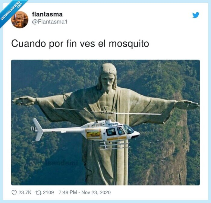 matar,mosquito,palmada