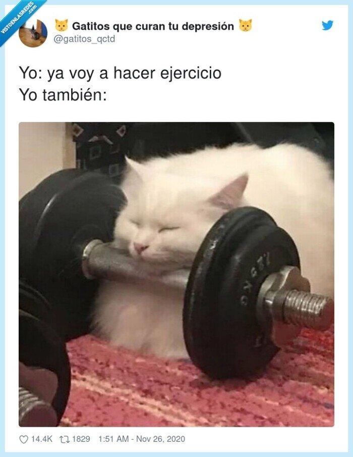 ejercicio,gym,palo,viernes