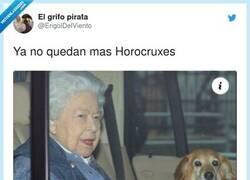 Enlace a Esta mujer nos va a tumbar a todos, por @ErigolDelViento