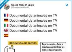 Enlace a Somos únicos mirando documentales, por @FrasesMadeSpain