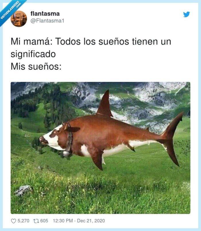 significado,sueños,tiburón,vaca