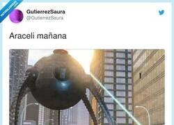 Enlace a Araceli ahora mismo, por @GutierrezSaura