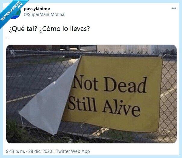 muerto,qué tal,vivo