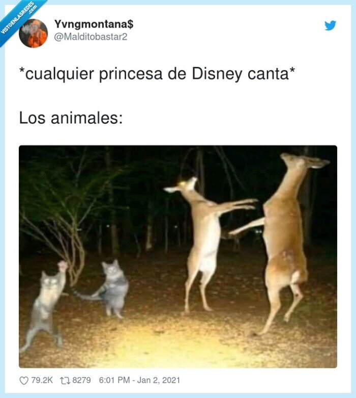 animales,canciones,disney,princesa