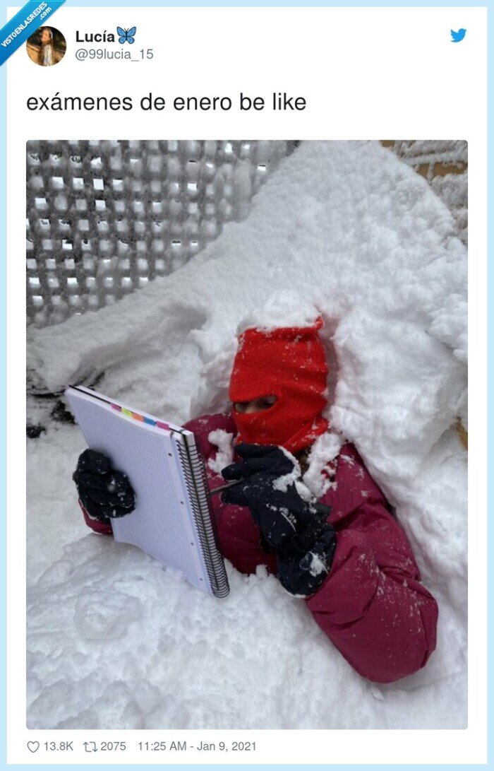 enero,exámenes,filomena,nieve