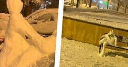 Enlace a Nueve muestras de arte de lo que los españoles solemos hacer cuando nieva, por @payasyn_