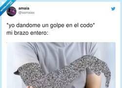 Enlace a Es horrible, por @aamaiax